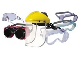 Face/Eye Protection